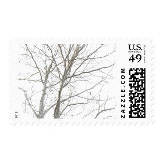 Bare Tree Horizontal Stamp