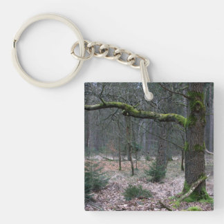Bare tree in a forest square acrylic keychain
