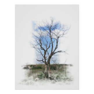 Bare Tree in the Pasture Print