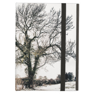 Bare Tree in the Snow iPad Air Case