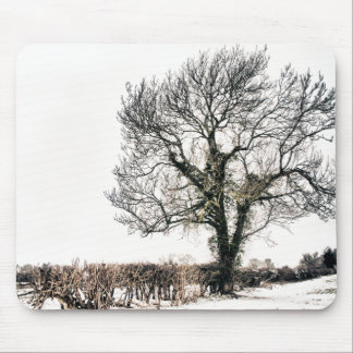 Bare Tree in the Snow Mouse Pad