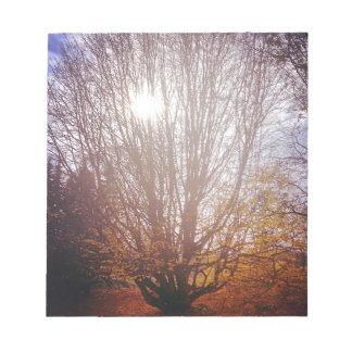 Bare Tree Notepad