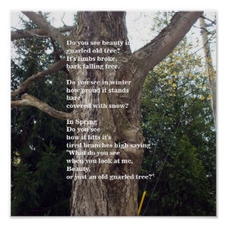 Bare Tree Poem fot Arbor Day Poster