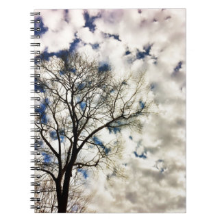 Bare Tree with Fluffy White Clouds Notebook