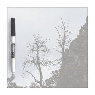 Bare Trees Growing Away Dry-Erase Whiteboard