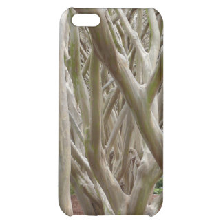 Bare Trees iPhone 5C Cases
