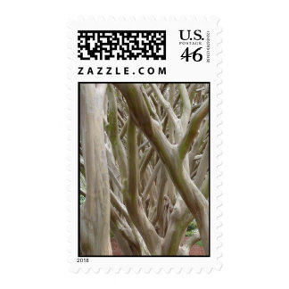 Bare Trees Stamps