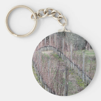 Bare vineyard field in winter . Tuscany, Italy Keychain