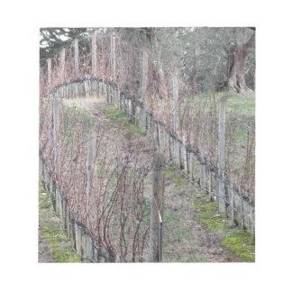 Bare vineyard field in winter . Tuscany, Italy Notepad