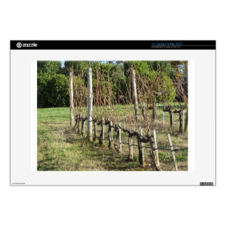 """Bare vineyard field in winter . Tuscany, Italy Skin For 15"""" Laptop"""