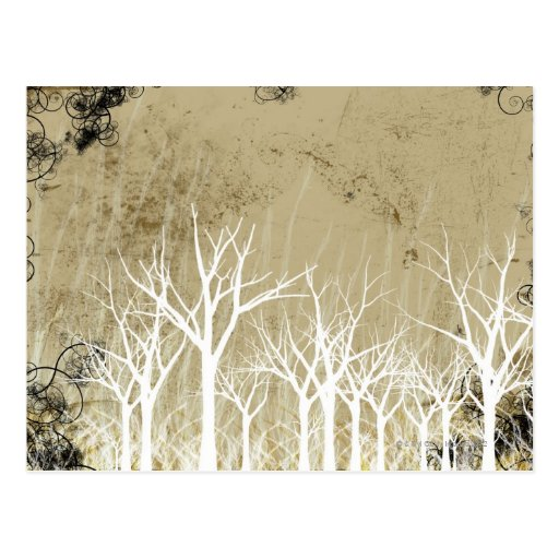 Bare Winter Trees Post Card