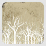 Bare Winter Trees Square Stickers