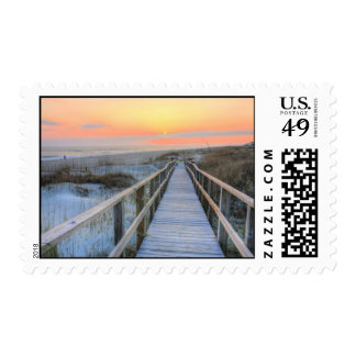 Barefoot Postage Stamps
