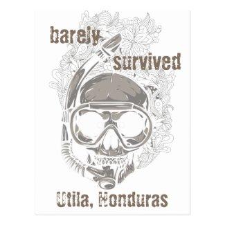 barely survived Utila Honduras Skull Dive Postcard