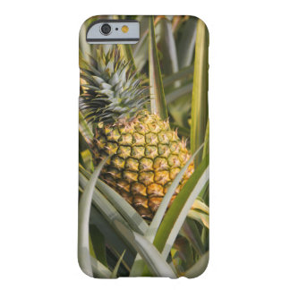 Barely There iPhone Case with Growing Pineapple