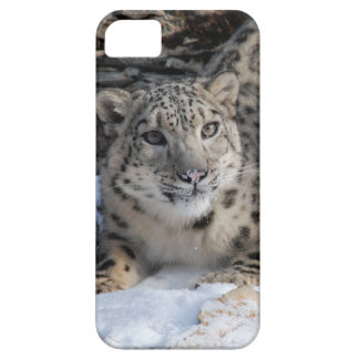 Barely There iphone Case with Snow Leopard iPhone 5 Cases