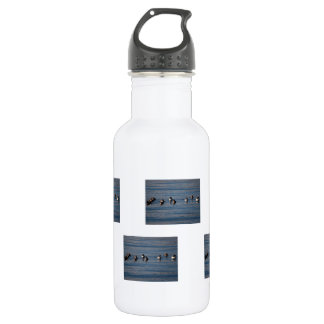 BARGOL Barrows Goldeneyes Stainless Steel Water Bottle