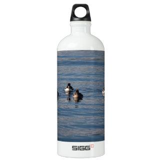 BARGOL Barrows Goldeneyes Water Bottle