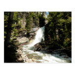 Baring Falls at Glacier National Park Postcard
