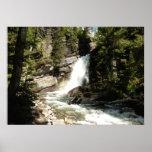 Baring Falls at Glacier National Park Poster