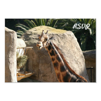 Baringo Giraffe 3.5x5 Paper Invitation Card