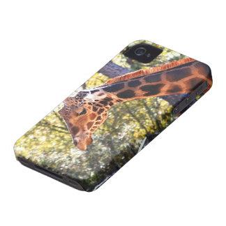 Baringo Giraffe Blackberry Case