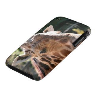 Baringo Giraffe iPhone 3 Case-Mate Case