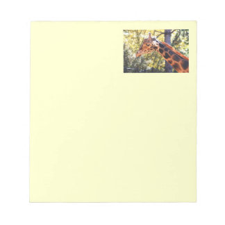Baringo Giraffe Note Pad