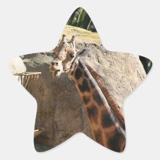 Baringo Giraffe Star Sticker