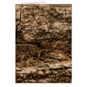 Bark Background Texture Card (<em>$3.15</em>)