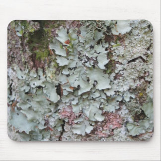 Bark Covered Mouse Mat - Mouse Pad