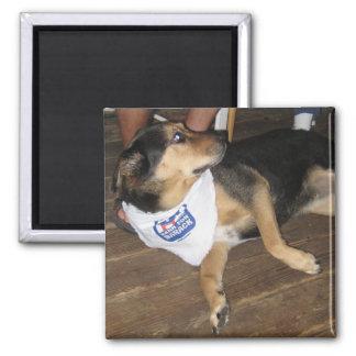 Bark for Barack - Dogs for Obama Magnet