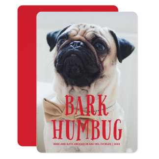 Bark Humbug Cute Puppy Dog | Holiday Photo Card