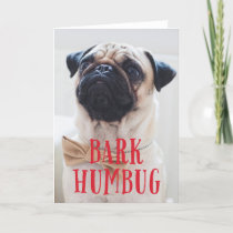 Bark Humbug Cute Puppy Dog | Holiday Photo Folded