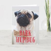 Bark Humbug Cute Puppy Dog | Holiday Photo Folded