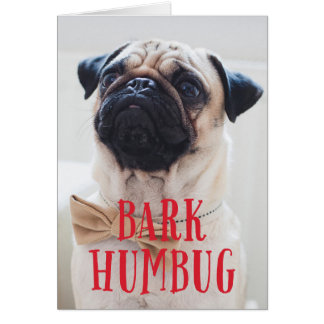 Bark Humbug Cute Puppy Dog   Holiday Photo Folded Card