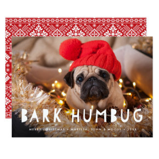 Bark Humbug | Pet Photo Holiday Card