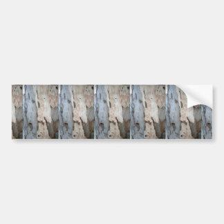 Bark Of A Eucalyptus Tree Bumper Sticker