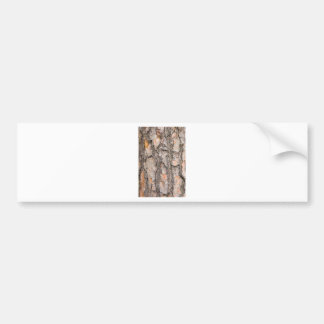 Bark of Scotch pine tree as background Bumper Sticker
