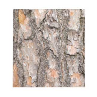 Bark of Scotch pine tree as background Notepad
