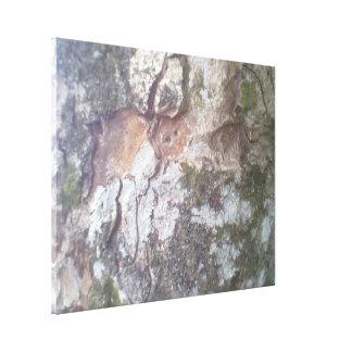 Bark on a tree gallery wrap canvas