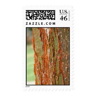 Bark post postage stamps