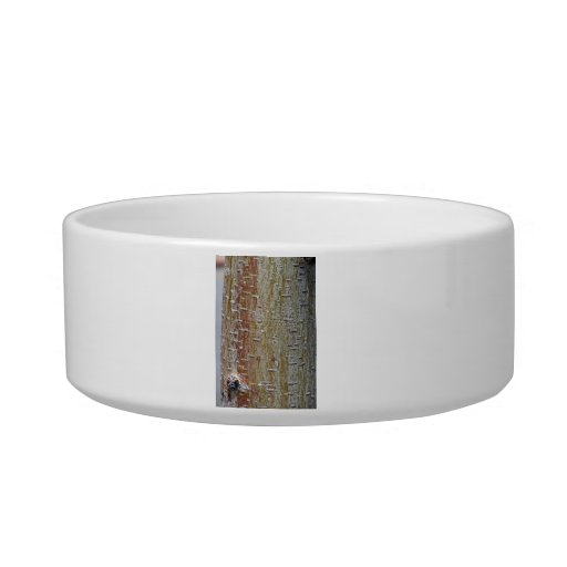 Bark Texture with different shades Cat Bowl