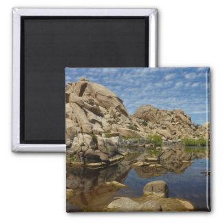Barker Dam Reflection at Joshua Tree National Park Magnet