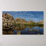 Barker Dam Reflection at Joshua Tree National Park Poster