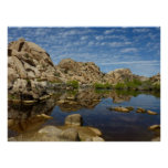 Barker Dam Reflection at Joshua Tree National Park Poster