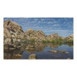 Barker Dam Reflection at Joshua Tree National Park Rectangular Sticker