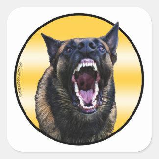 "Barking Belgian Malinois ""Maligator"" Square Sticker"