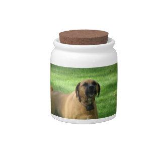 Barking Boxer Dog Candy Jar