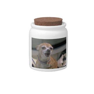 Barking Chihuahua Dog Treat Candy Jar